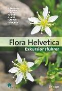 Cover-Bild zu Flora Helvetica - Exkursionsführer von Eggenberg, Stefan