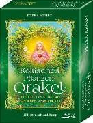 Cover-Bild zu Keltisches Pflanzen-Orakel - Botschaften der Pflanzengeister für Heilung, Schutz und Fülle von Arndt, Petra