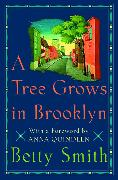 Cover-Bild zu Smith, Betty: A Tree Grows in Brooklyn