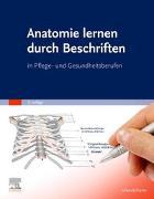 Cover-Bild zu Elsevier GmbH (Hrsg.): Anatomie lernen durch Beschriften