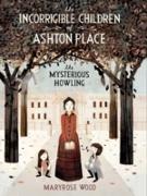 Cover-Bild zu Klassen, Jon (Illustr.): Incorrigible Children of Ashton Place: Book I (eBook)