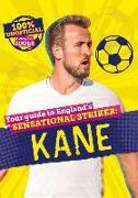 Cover-Bild zu Pettman, Kevin: 100% Unofficial Football Idols: Kane