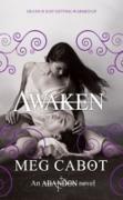 Cover-Bild zu Cabot, Meg: Abandon: Awaken (eBook)