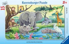 Cover-Bild zu Tiere Afrikas