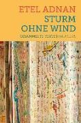 Cover-Bild zu Adnan, Etel: Sturm ohne Wind