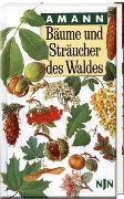 Cover-Bild zu Bäume und Sträucher des Waldes von Amann, Gottfried