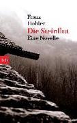 Cover-Bild zu Hohler, Franz: Die Steinflut