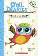 Cover-Bild zu Elliott, Rebecca: Eva Sees a Ghost