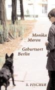 Cover-Bild zu Maron, Monika: Geburtsort Berlin