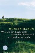 Cover-Bild zu Maron, Monika: Wie ich ein Buch nicht schreiben kann und es trotzdem versuche