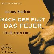 Cover-Bild zu Nach der Flut das Feuer (Ungekürzte Lesung) (Audio Download) von Baldwin, James