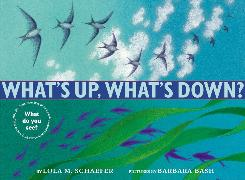 Cover-Bild zu Schaefer, Lola M.: What's Up, What's Down?