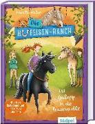 Cover-Bild zu Weber, Annette: Die Hufeisen-Ranch - Mit Galopp in die Traumrolle