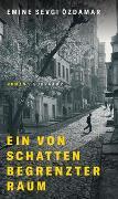 Cover-Bild zu Özdamar, Emine Sevgi: Ein von Schatten begrenzter Raum