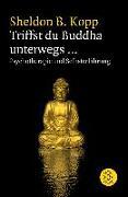 Cover-Bild zu Triffst du Buddha unterwegs