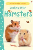 Cover-Bild zu Meredith, Susan: Looking After Hamsters