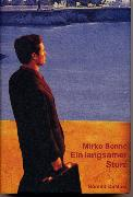 Cover-Bild zu Bonné, Mirko: Ein langsamer Sturz (eBook)