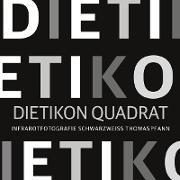 Cover-Bild zu Pfann, Thomas: Dietikon Quadrat