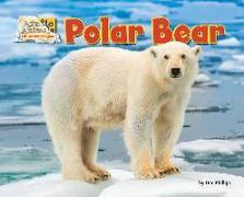 Cover-Bild zu Phillips, Dee: Polar Bear