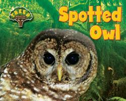 Cover-Bild zu Phillips, Dee: Spotted Owl