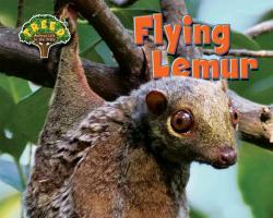 Cover-Bild zu Phillips, Dee: Flying Lemur