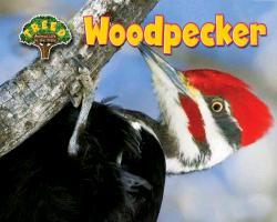 Cover-Bild zu Phillips, Dee: Woodpecker