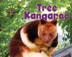 Cover-Bild zu Phillips, Dee: Tree Kangaroo