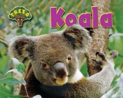 Cover-Bild zu Phillips, Dee: Koala