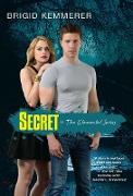 Cover-Bild zu Kemmerer, Brigid: Secret