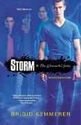 Cover-Bild zu Kemmerer, Brigid: Storm