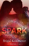 Cover-Bild zu Kemmerer, Brigid: Spark