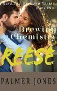 Cover-Bild zu Jones, Palmer: Reese (Brewing Chemistry) (eBook)