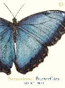 Cover-Bild zu Rothery, Ben: Sensational Butterflies