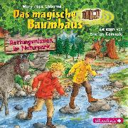 Cover-Bild zu Rettungsmission im Naturpark