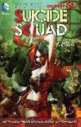 Cover-Bild zu Glass, Adam: Suicide Squad Vol. 1: Kicked in the Teeth (The New 52)