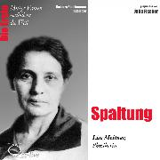 Cover-Bild zu Spaltung - Die Physikerin Lise Meitner (Audio Download) von Sichtermann, Barbara