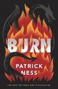 Cover-Bild zu Ness, Patrick: Burn