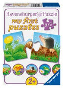 Cover-Bild zu Tiere im Garten von Gruber, Denitza (Illustr.)