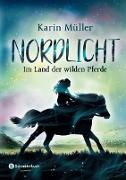 Cover-Bild zu Müller, Karin: Nordlicht, Band 01 (eBook)