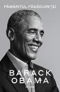 Cover-Bild zu Obama, Barack: Pamantul fagaduintei (eBook)