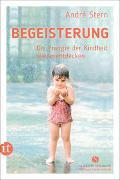 Cover-Bild zu Begeisterung von Stern, André