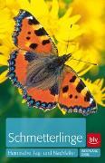 Cover-Bild zu Schmetterlinge von Dierl, Wolfgang