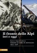 Cover-Bild zu Bernhart, Udo: Il fronte delle Alpi ieri e oggi. Sulle tracce della grande guerra in montagna 1915-1918