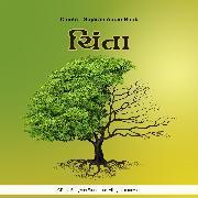 Cover-Bild zu Bhagwan, Dada: Chinta - Gujarati Audio Book (Audio Download)
