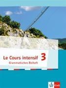 Cover-Bild zu Le Cours intensif 3. Grammatisches Beiheft 3. Lernjahr