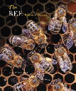 Cover-Bild zu Wilson-Rich, Noah: The Bee