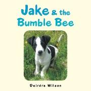 Cover-Bild zu Wilson, Deirdre: JAKE & THE BUMBLE BEE