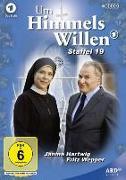 Cover-Bild zu Baier, Michael: Um Himmels Willen