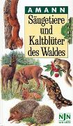 Cover-Bild zu Amann, Gottfried: Säugetiere und Kaltblüter