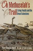 Cover-Bild zu Ward, Peter D.: On Methuselah's Trail: Living Fossils and the Great Extinctions